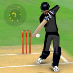 Smashing Cricket – a cricket game like none other 2.9.9 MOD APK